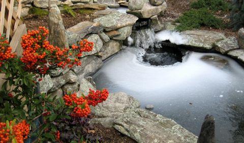 Jak zazimovat zahradní jezírko po sezóně?